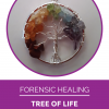 Energy healing necklace